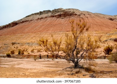 Aktau mountains in national park Altyn Emel in Kazakhstan, Central Asia