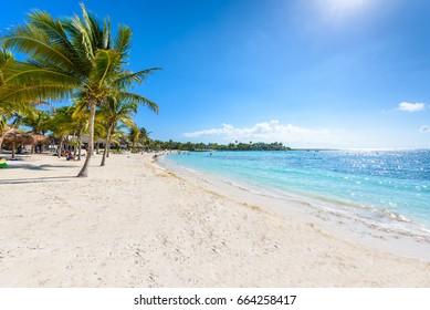 Akumal beach - paradise bay  - tropical beach in Quintana Roo, Mexico - caribbean coast