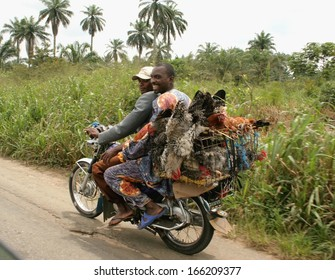 AKWA IBOM, NIGERIA, JUNE 27: Two unidentified men carry chickens to market by motorcycle on 27 June, 2005 in the area of Akwa Ibom in the south of Nigeria.
