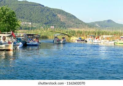 AKYAKA, MUGLA, TURKEY - June 17, 2017 : Geese and Cafe at Azmak Stream, Gokova Bay, Akyaka