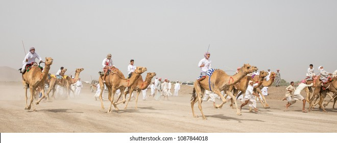 Al Safen, Oman, 27th April, 2018: omani men at a camel race in a countryside