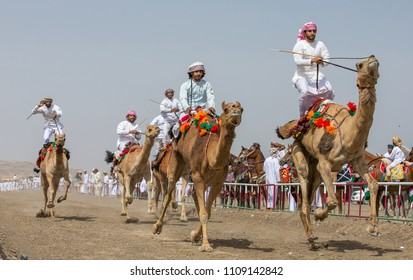 Al Safen, Oman, 28th April 2018: men riding camels for fun in rural Oman