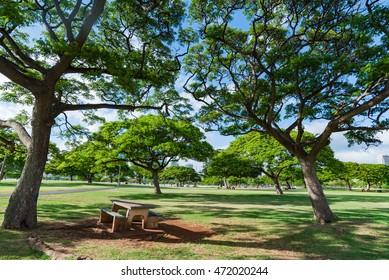 Ala Moana Beach Park in Honolulu Hawaii