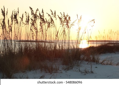 alabama orange beach gulf shores beach sand dunes and sea oats at sunset