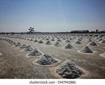 Alamy Sea salt farm at Samut Sakhon, Thailand. Organic sea salt.