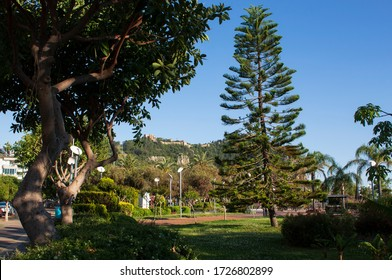 Alanya cleopatra park and nature trees