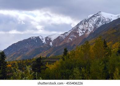 Alaska Fall Color from the Glenn Highway