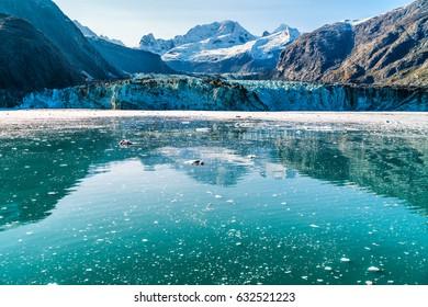 Alaska Glacier Bay Johns Hopkins glacier front with blue water copyspace. Cruise travel vacation in Alaska, USA.