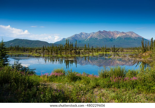 Alaska landscape lake