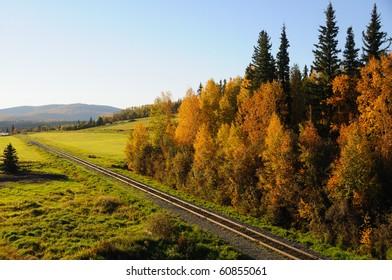 Alaska Railroad in the Fall