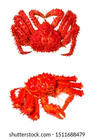 Alaskan king crab isolated in white background,Hokkaido Taraba Crab on white, Red king crab in white background.(With clipping path)