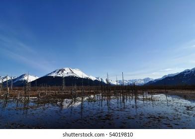 Alaskan marshland and mountains, landscape