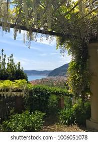 ALASSIO, ITALY – APRIL 24, 2017: A part of the garden of Villa della Pergola, an estate and hotel in Alassio town, Savona province, Liguria region, Italy