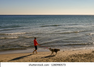 Alassio, Liguria / Italy - 01 02 2019: Man walking with his dog on a sandy beach in a sunny day