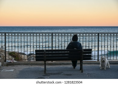Alassio, Liguria / Italy - 01 02 2019: Woman sitting on a bench in front of the sea with her dog at sunset in winter