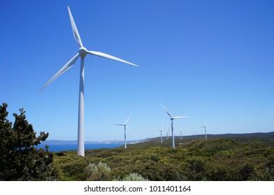 Albany Wind Farm and The Gap Bridge