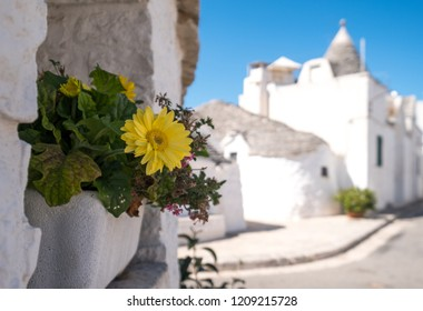 Alberobello, Italy. September 2018. Flower box in the foreground. In the background, blurred view of traditional dry stone trulli houses on a street in the Aia Piccola residential area of Alberobello.
