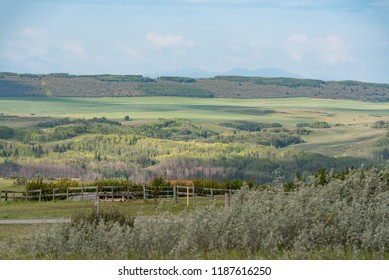 Alberta, Canada.  Bow River valley west of Cochrane on a summer morning, looking west toward Rocky Mountains.