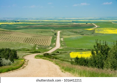 Alberta, Canada.  Looking north from the Wintering Hills toward the Red Deer River valley in the distance near Drumheller.