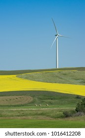 Alberta, Canada.  Wind turbine and fields in the Wintering Hills south of Drumheller.