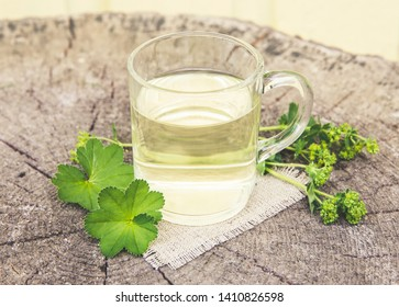 Alchemilla vulgaris, common lady's mantle medicinal herbal tea concept. Composition on natural wooden background. Instagram style filter.