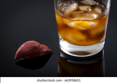 Alcoholic liver damage and cirrhosis concept with a liver next to a glass of alcohol. Cirrhosis is most commonly caused by alcoholism, hepatitis B or C or non-alcoholic fatty liver disease