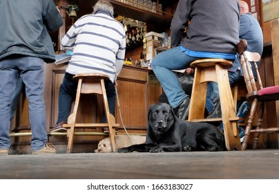 Aldeburgh, Suffolk. UK. September 16th 2017. Men sitting at the bar at the White Hart pub, Aldeburgh, with two dogs resting on the floor