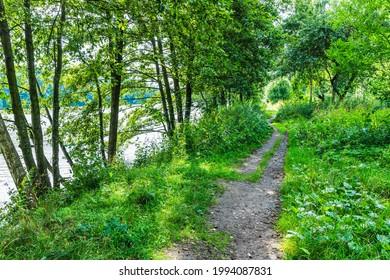 Alekseyevskaya Grove hiking trail in Losiny Ostrov National Park near Moscow, Russia - Shutterstock ID 1994087831