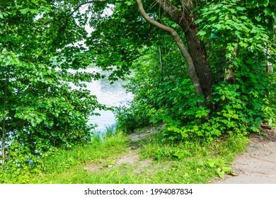 Alekseyevskaya Grove hiking trail in Losiny Ostrov National Park near Moscow, Russia - Shutterstock ID 1994087834