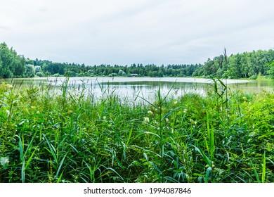 Alekseyevskaya Grove hiking trail in Losiny Ostrov National Park near Moscow, Russia - Shutterstock ID 1994087846