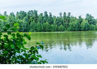 Alekseyevskaya Grove hiking trail in Losiny Ostrov National Park near Moscow, Russia - Shutterstock ID 1994087852