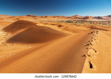 Alene footprints on huge sand dune. Africa. Namibia.