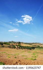 alentejo fields near Terena village, Portugal