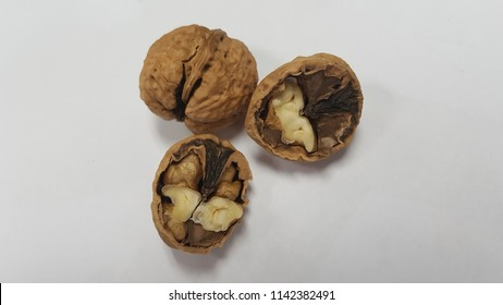 Aleurites moluccanus candlenut, is a flowering tree in the spurgefamily, Euphorbiaceae, also known as candleberry Indian walnut kukui nut tree and Kekuna tree.