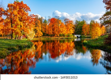 Alexander park in autumn, Pushkin (Tsarskoe Selo), St. Petersburg, Russia - Shutterstock ID 1693011013