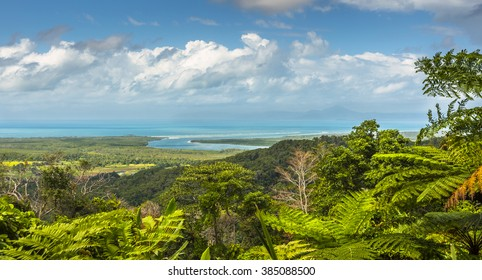 Alexandra lookout Daintree view sunny morning Coral sea Queensland tropics
