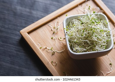 Alfalfa sprouts in white bowl on a wooden tray