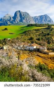 Alfarnatejo, Andalusia, Spain