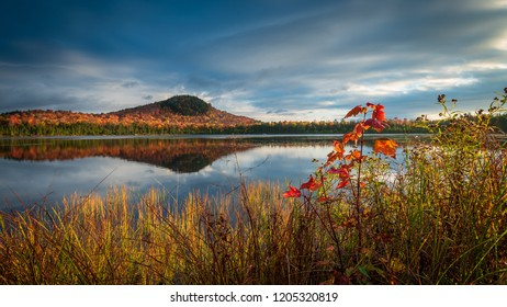 Alford Pond reflecting autumn colors from Seymour Mountain at Lake Placid, the Adirondacks, New York