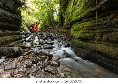 ALFREDO WAGNER / Santa Catarina / BRAZIL - 06/25/2019: Backpacker on a trail in the mountain region in southern Brazil, in the city of Alfredo Wagner in Santa Catarina.