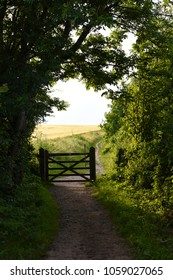 Alfriston, Near Eastbourne, East Sussex, UK.  2016/07/14:  A gate on The South Downs Way