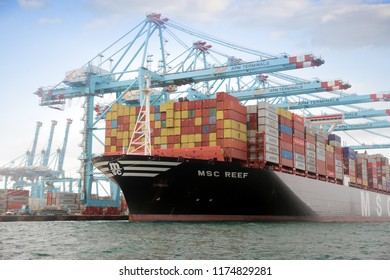 ALGECIRAS, SPAIN – AUGUST 25. Container ship MSC REEF working with containers handling gantry cranes in the port of Algeciras, on august 25, 2018 in Cadiz.