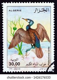 """ALGERIA - CIRCA 1998: A stamp printed in Algeria from the """"Birds"""" issue shows Great Cormorant (Phalacrocorax carbo), circa 1998."""