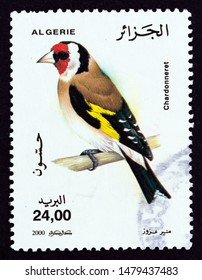 "ALGERIA - CIRCA 2000: A stamp printed in Algeria from the ""Birds"" issue shows European goldfinch (Carduelis carduelis), circa 2000."