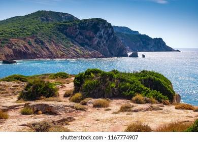 Alghero, Sardinia, Italy - Panoramic view of the Cala Porticciolo gulf with cliffs over the Cala Viola gulf in the Porto Conte Regional Park - Shutterstock ID 1167774907