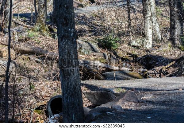 Algonquin Hiking Trail
