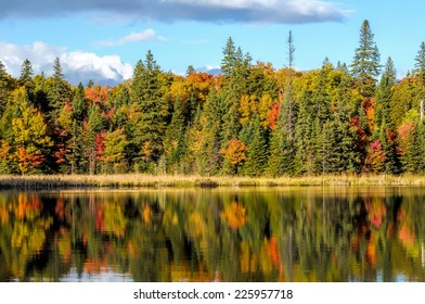 Algonquin Park In Fall