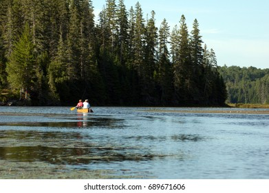 Algonquin Park. White Trout Lake in summer time