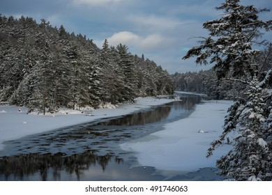 Algonquin Provincial Park painted in white by a a soft snowfall