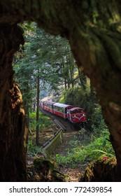 Ali train train